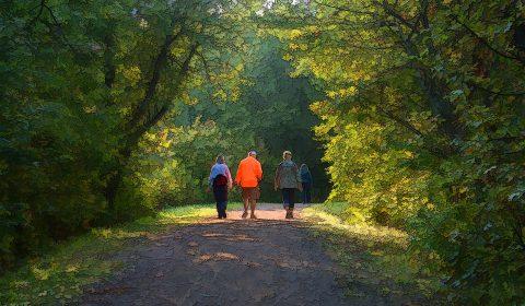 mindful walk